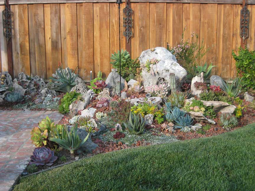Isaac Sends Along These Before And After Photos Of His Garden. Itu0027s Amazing  What Succulents Can Do With Just A Few Years Growth In The Bay Area, ...
