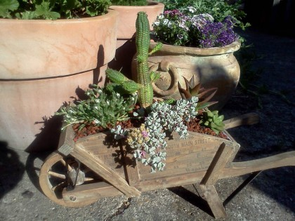 tiny wheelbarrow planter